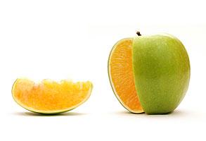 GM food trials