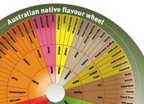 Australian Native Flavour Wheel