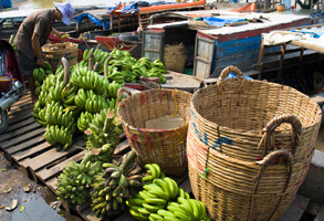 Banana exports -Philippines