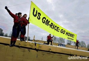 greenpeace_gm_rice_protest_rotterdam_harbour.jpg
