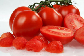 Intense Tomato from SP Exports