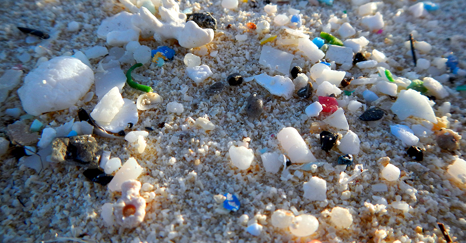 http://oceanservice.noaa.gov/facts/microplastics.jpg