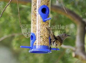 Newcastle University bird feeder