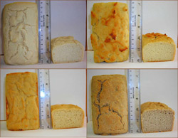 Teagasc gluten-free breads