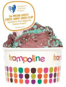 Trampoline Croc Mint