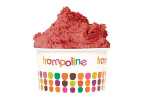 trampoline-gelato.png