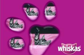 Whiskas purple paw